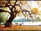 Hà Nội mùa thu đắm say lòng người